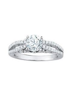 Engagement Ring - 14K White Gold - MultiRow - Style 50795-E